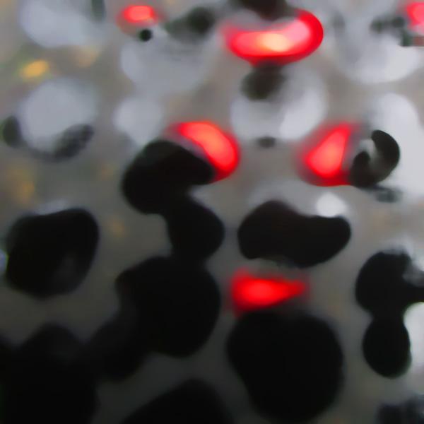 A lab series image by Tom van Teijlingen