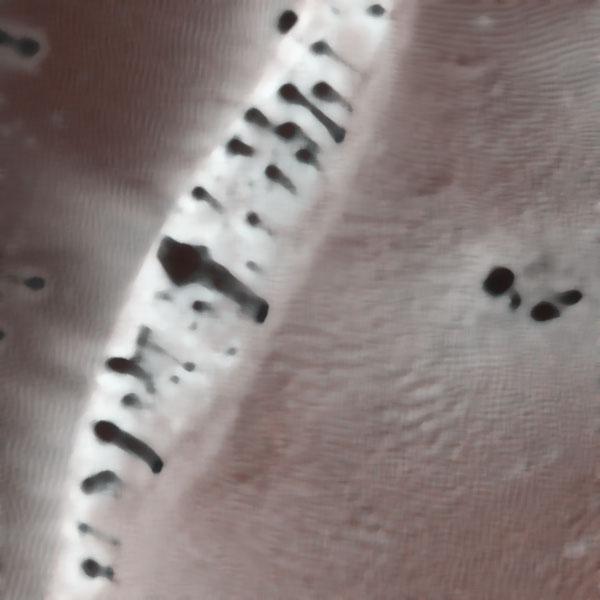Dune, an image by Tom van Teijlingen