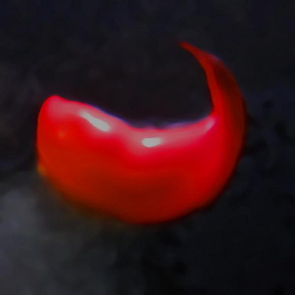 lick, an image by Tom van Teijlingen